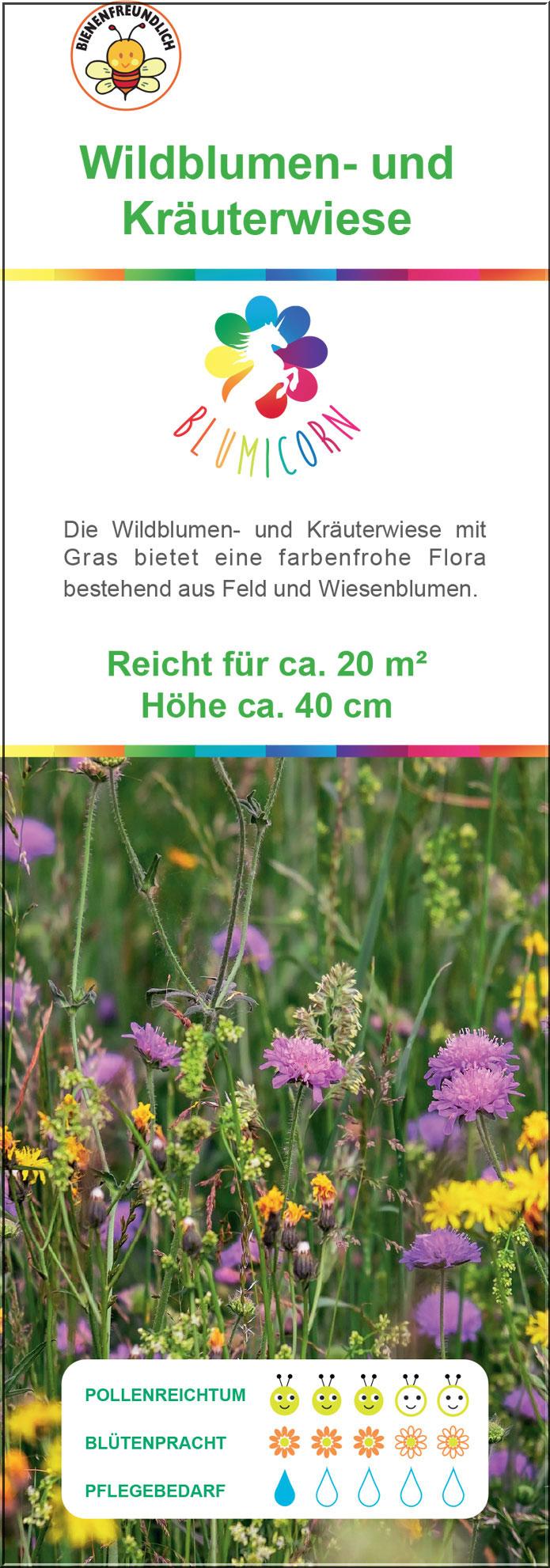 Wildblumen-und-Kräuterwiese